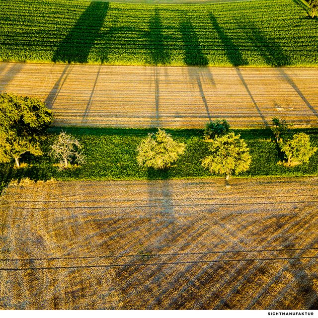 Lange Schatten @baden.wuerttemberg @visualsofdrones @beautifuldestinations @fotototal @Ig_shotz @big_shotz @drone_division_ @thedroneu @aerialphotography @lifeofgermany @travelcollectively @thinkinhd